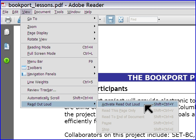 udl4all    accessibility features in adobe reader